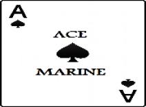 Ace Marine-Outboard Engine Repair Palm Beach